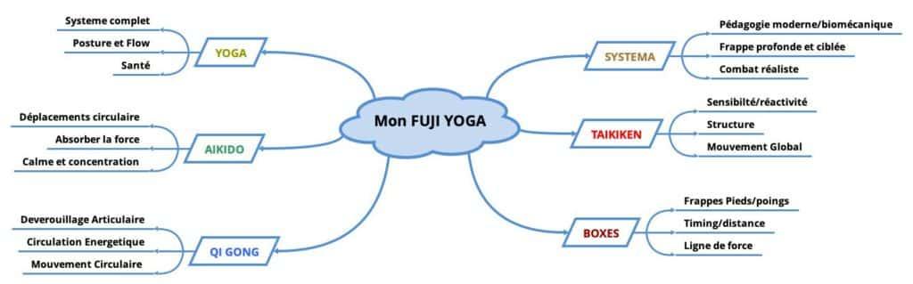 Mon approche fusion des arts martiaux